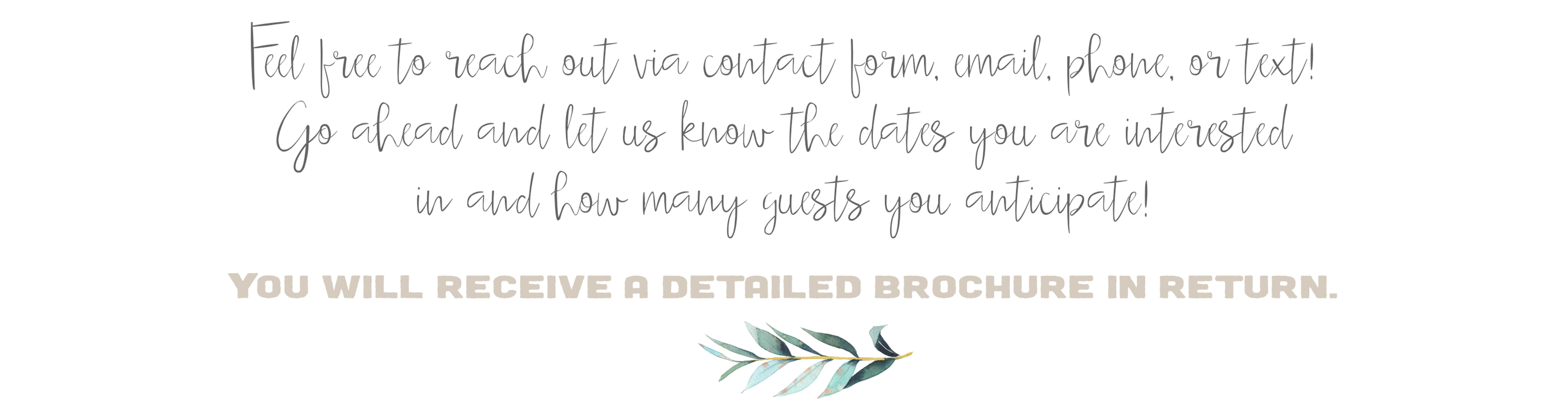 Say Hi details PDF Brochure request