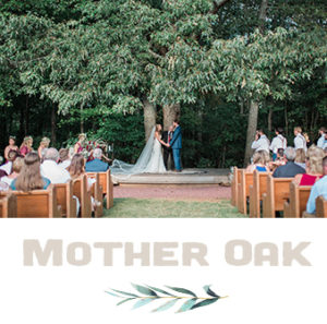 homepage-graphic-mother-oak-2